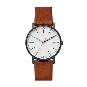 Reloj Skagen Signatur SKW6374